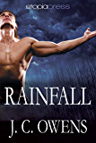 Rainfall (The Anrodnes Chronicles Book 4)