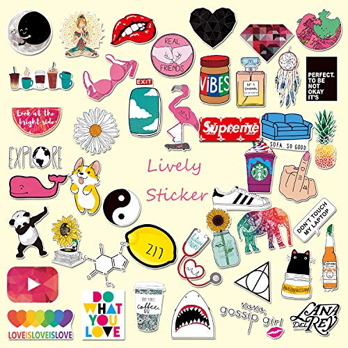 Cute Stickers for Water Bottles and Laptop, Cool Computer Stickers for Hydro Flask, Guitar,Bike,Skateboard Stickers Waterproof Vinyl Decals Stickers, Best Gift for Children Teen Adult, 45 pcs Pack.