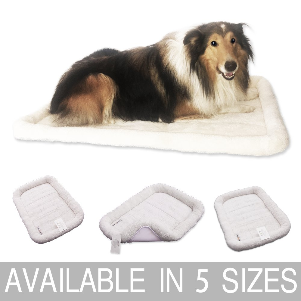 Paws of Mind Padded Bolster Pet Bed for Dogs & Cats by, Fits Crates & Carriers, Cream, 36'' x 23''