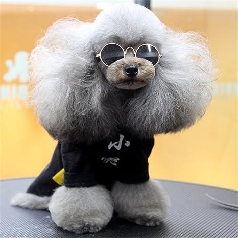 Shefine Gafas de Sol para Perro, Gato, Mascota, Gafas de Sol ...