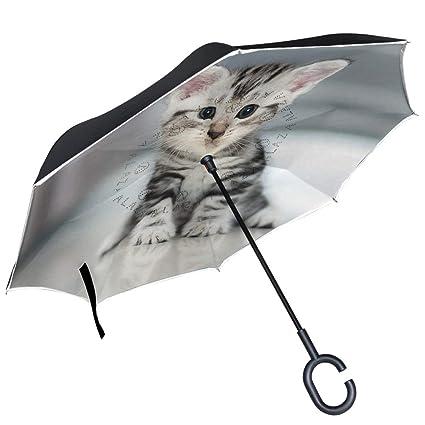 e2f7474e491e5 Image Unavailable. Image not available for. Color: Chu warm Cat Kitten Inverted  Umbrella Double Layer Windproof Reverse Umbrella