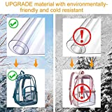 Clear Backpack, Heavy Duty See Through