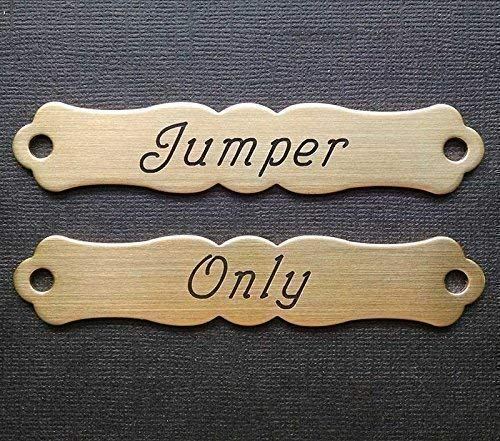 HALTER or Large SADDLE NAME PLATE ORNATE Thick Solid Brass Custom Engraved