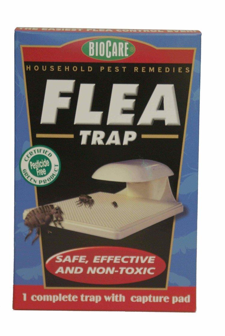 Springstar S102 Flea Trap 1Pack 4