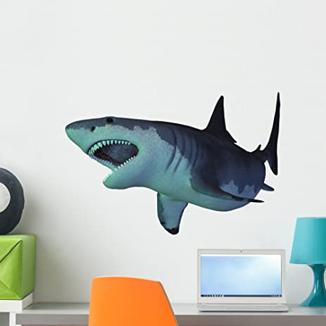Megalodon Shark Wall Decal By Wallmonkeys Peel And Stick Graphic (24 In W X  18