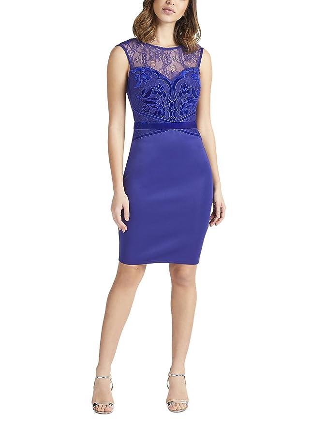 LIPSY Womens Velvet Appliquà Artwork Bodycon Dress - Blue -: Amazon ...