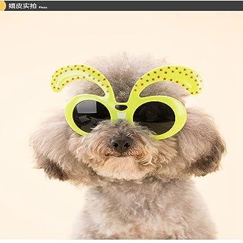 FENG Gafas de Sol para Perro, Gafas de Sol de Bichon, Gafas ...