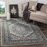 Safavieh Adirondack Collection ADR108A Silver and Black Oriental Vintage Medallion Area Rug (8' x 10')