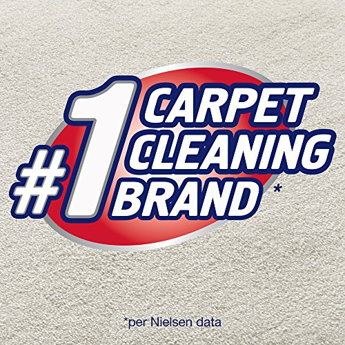 B Q Carpet Cleaning S Carpet Vidalondon
