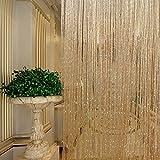 Bathroom Shower Window Curtains Tassel Glitter Curtains String Champagne for Living Room Window Door Shower Curtain Divider Panels Screen Drape Decoration