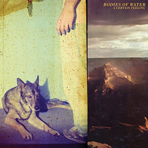CD : Bodies of Water - A Certain Feeling (CD)