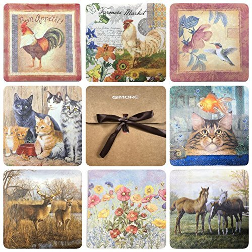 Frame Decoupage - Gimore Luncheon Napkins 40 Count 9.8