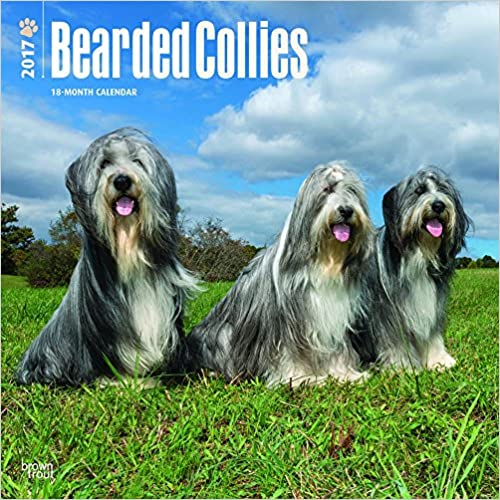 Téléchargement gratuit en ligne Bearded Collies 2017 Square (Multilingual Edition) 1465083251 PDF FB2