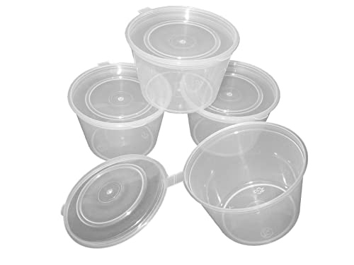 100ml Hinged Lid Plastic Pot X 20 Food Craft Storage