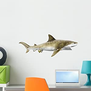 Wallmonkeys Tiger Shark Wall Decal Peel and Stick Graphic (24 in W x 12 in H) WM149940