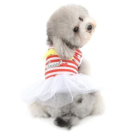 AYWJ Vestido de tutú con alas de ángel para Perro, Gato ...