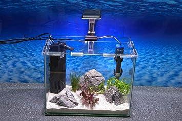 Wave caja Orion 30 Nano Acuario Completo Acuario Mini acuario + Filtro equipo: Amazon.es: Productos para mascotas