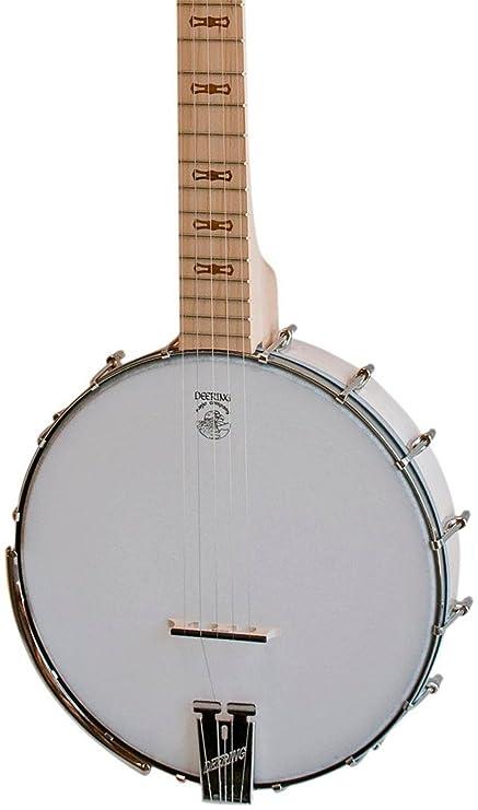Amazon com: Deering Goodtime Special 5-String Open Back Banjo