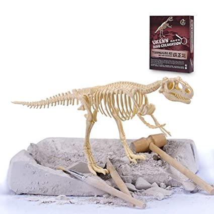 Amazon com: NEWBEGIN Excavation Toys,Mega Fossil Dig Kit - Dig up