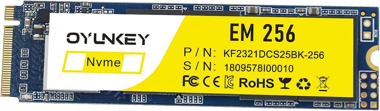 OYUNKEY M.2 NVME SSD 2280 PCIE Unidad de Estado sólido de 256GB(M ...