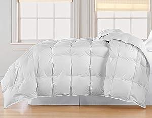 Blue Ridge Home Fashions, Inc. Microfiber Down Fiber Full-Queen in White Color DOWN/DOWN DOWN/DOWN BLEND COMFORTER,