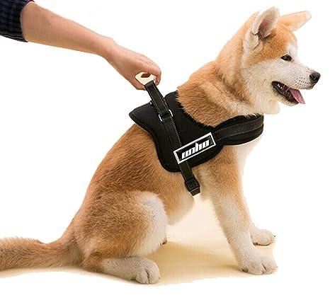 UNHO Arnés de Perro Cómodo Sin cinturón Collar Chaleco para ...