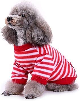 before now Disfraz de Navidad de Halloween para Mascotas 丨 Patrón ...