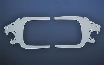Izquierda y Derecha placas de puerta de acero inoxidable león decoración para Man TGA TGS TGX