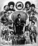 The Black Panther Party Poster Print by Wishum Gregory (20 x 24)