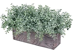 Artificial Flocked Eucalyptus Greenery in Rustic Rectangular Wood Planter Box Greenery Arrangement Potted Plant in Dusty Green for Wedding Centerpiece Office Room Table Windowsill Décor
