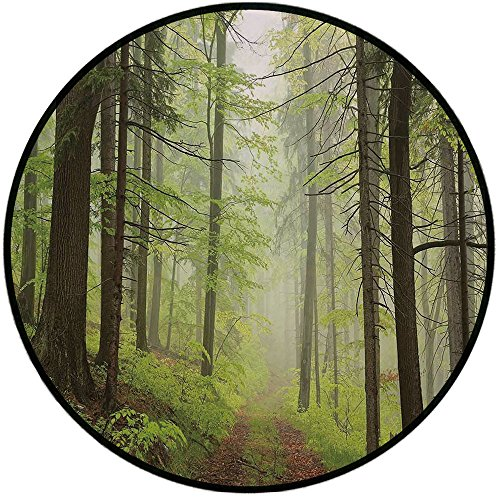 Alder Chair Outdoor (Printing Round Rug,Outdoor,Trail Trough Foggy Alders Beeches Oaks Coniferous Grove Hiking Theme Mat Non-Slip Soft Entrance Mat Door Floor Rug Area Rug For Chair Living Room,Light Green Light Yellow)