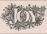 Hero Arts K5852 Joy Burst Woodblock Stamp