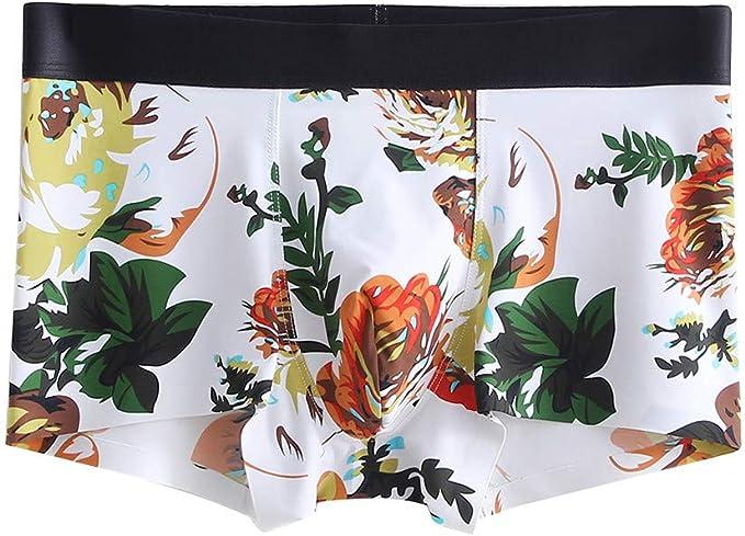 Cocoty-store 2019 Calzoncillos para Hombres Sexy Algodón Impresión Respirable Transparente Estuche Talle bajo Calzoncillos Boxer de Hombres Pantalones Cortos para Hombres Ropa Interior L-XXXL: Amazon.es: Ropa y accesorios