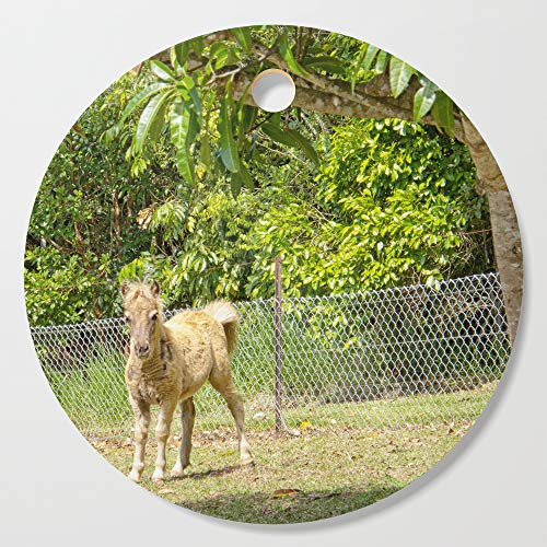 Society6 Wooden Cutting Board, Round, Mischievous miniature horse foal by hereswendy ()