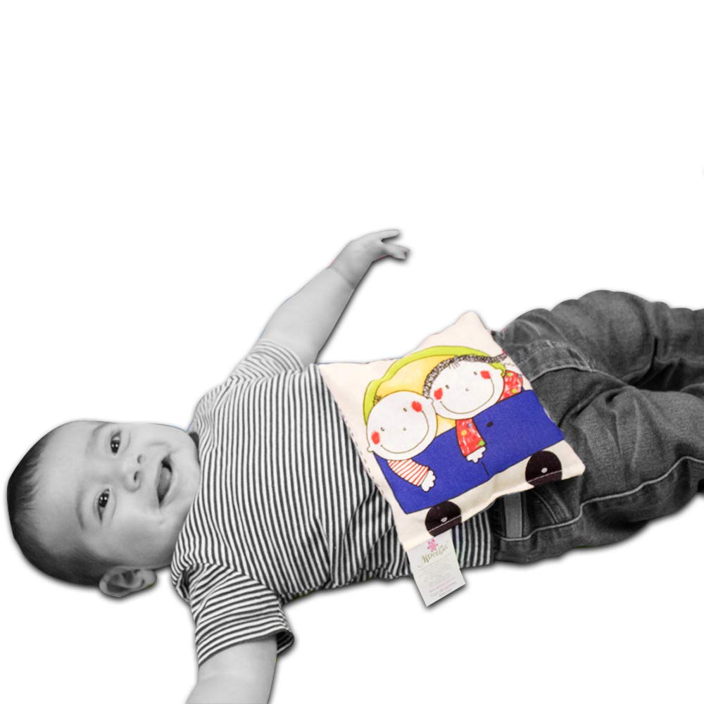 Amazon.com: COJIN DE SEMILLAS ALDONZA INFANTIL ...