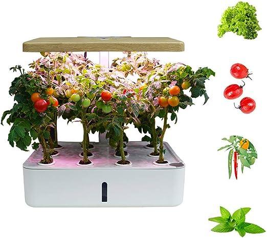 FDYD La hidroponía Cubierta Inteligente jardín hidropónico Jardín, Iluminación LED automática del Temporizador automático Hidroponía jardinería de Interior Inicio Kit: Amazon.es: Hogar