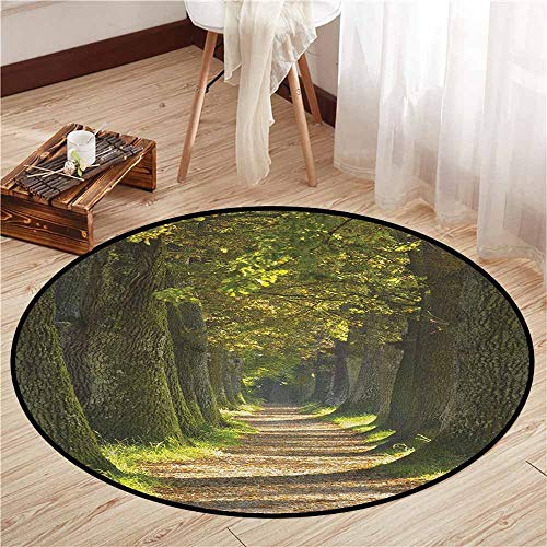 Area Round Rugs,Tree,Alley with Oak Trees Forest Natural Rural Scenic Perspective Picture,Children Bedroom Rugs,2'7
