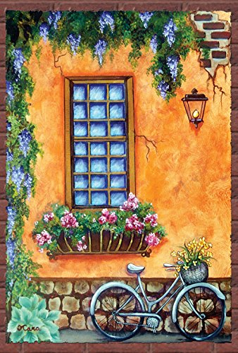 Toland Home Garden Rustic Townhouse Window 28 x 40 Inch Decorative Tuscan Spring Flower Bicycle House Flag