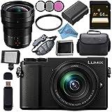 Panasonic Lumix DC-GX9 Mirrorless Micro Four Thirds Digital Camera with 12-60mm Lens (Black) + Panasonic Leica DG Vario-Elmarit 8-18mm f/2.8-4 ASPH. Lens Bundle