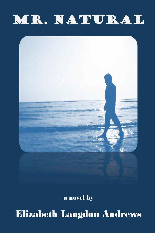 Download Mr. Natural ebook