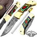 Multi Color Wood 5.5'' Custom Handmade Damascus Steel Double Brass Bloster With Sharpening Rod Folding Pocket Knife Back Lock 100% Prime Quality Come With Leather Sheath