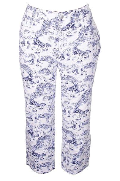 b0db4c9661e Charter Club Womens Plus Bristol Printed Tummy Slimming Capri Pants Blue  16W at Amazon Women s Clothing store