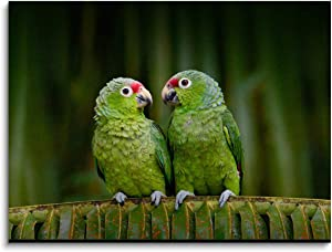 Lovely Birds Painting wall decor art Two Parrots on Green palm tree Leaf romantic Animal photo Picture Canvas Print Home Decoration Wall Art for Living Room Bedroom,Framed Artwork 12x16 Inches