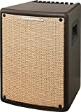 Ibanez T80II Troubadour II Acoustic Guitar Combo Amplifier Brown - 80 Watt w/ Digital Chorus and Reverb