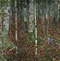 Birch Forest By Gustav Klimt. 100% Hand Painted. Oil On Canvas. Reproduction. (Unframed and Unstretched).