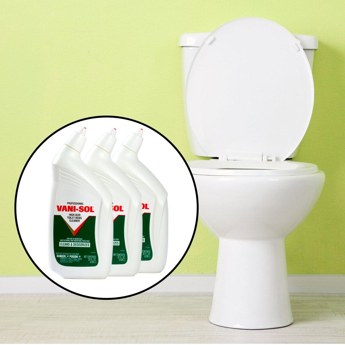 Amazon.com: Vani-Sol Professional Toilet Bowl Cleaner (32 fl. oz., 3 ...
