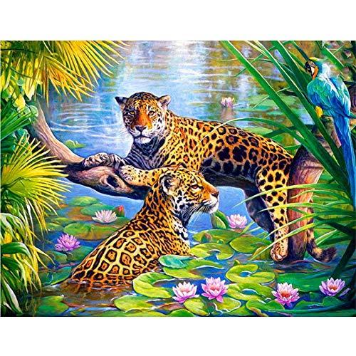 KYKDY Incorniciato FAI DA TE Pittura By Numbers Tiger Acrilico Pittura Moderna Picture Home Decor Per Soggiorno 40x50 cm RA3350, FAI DA TE Incorniciato 40x50 cm, RA3042