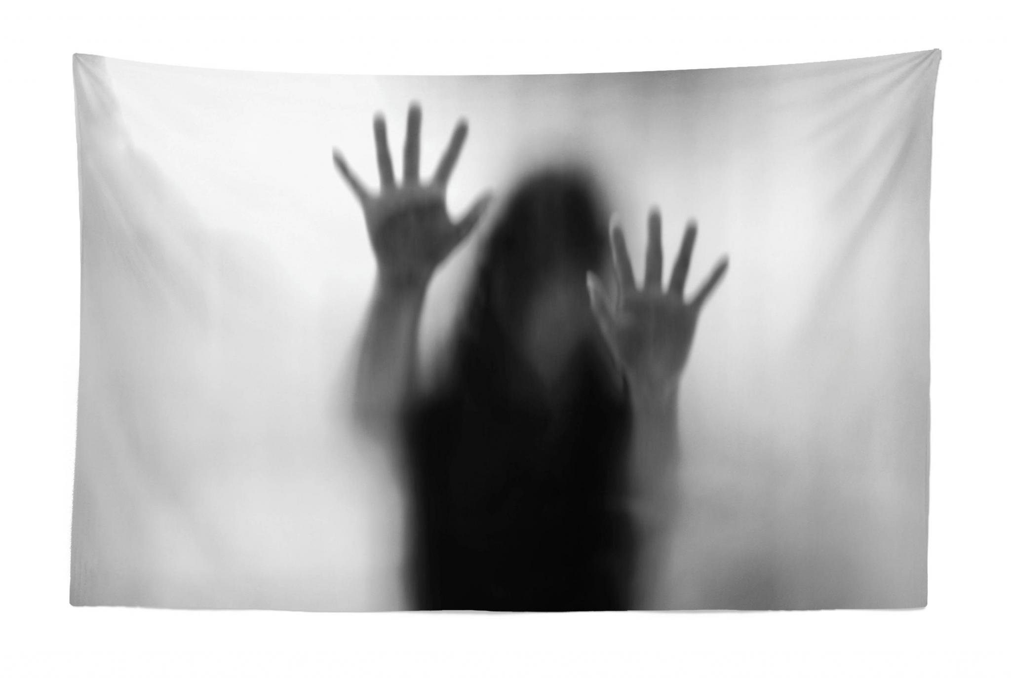 Lunarable Horror House Tapestry, Silhouette of Woman behind the Veil Scared to Death Obscured Paranormal Photo Print, Fabric Wall Hanging Decor for Bedroom Living Room Dorm, 45 W X 30 L Inches, Gray