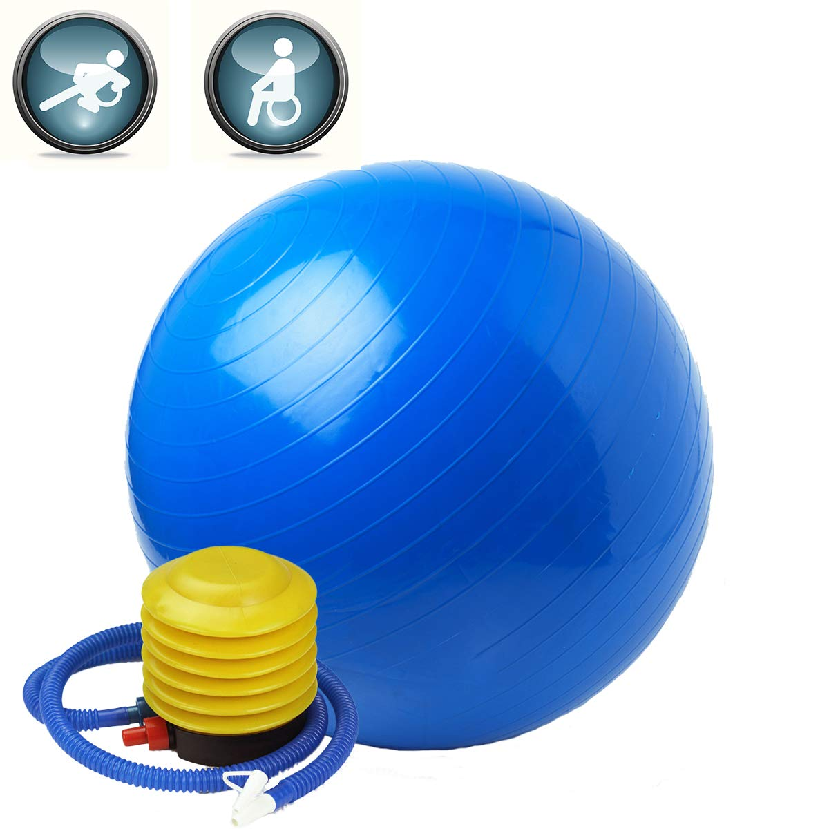 Fitness Ball Stability Anti-Burst 2200lb Capacity with Quick Pump - 65cm Yoga Ball,Exercise Ball,Stability Ball,Balance Ball,Pilates Ball