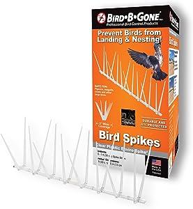 Bird B Gone Enviro-Spike Bird Spike, True 10-Feet, MADE IN THE USA